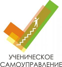Наша команда получила диплом в конкурсе ученических советов Челябинской области по самоуправлению
