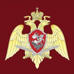 Сегодня в России отмечается День национальной гвардии!